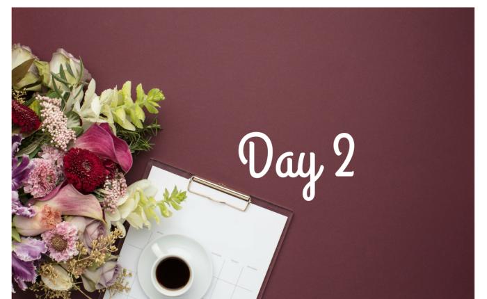 Day 2-Plan